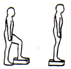 Sample Routine - 3 day No equipment Bodyweight: Intermediate Step_up_front