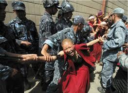 Nepal Buddhist nunny