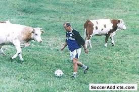 http://tbn1.google.com/images?q=tbn:NjUl_HGJqqPJ4M:http://www.socceraddicts.com/Funny%2520Pictures/3.jpg