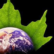 local cooling,against global warming,global warming,stop pemanasan global