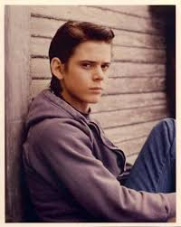 C. Thomas Howell as Ponyboy