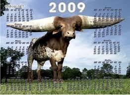 2009 год!