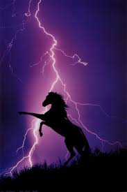 cheval 2400-1227~Eclairs-et-silhouette-de-cheval-Affiches
