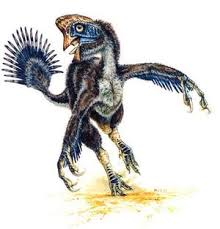 Dinosaur peocock