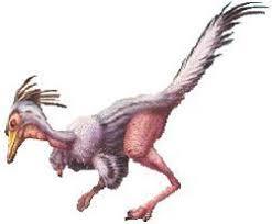 chicken saurus, pollosuauro