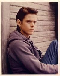 C. Thomas Howell as Ponyboy